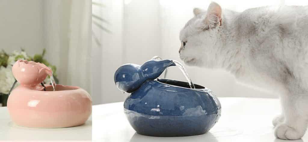 Best Ceramic Cat Water Fountains