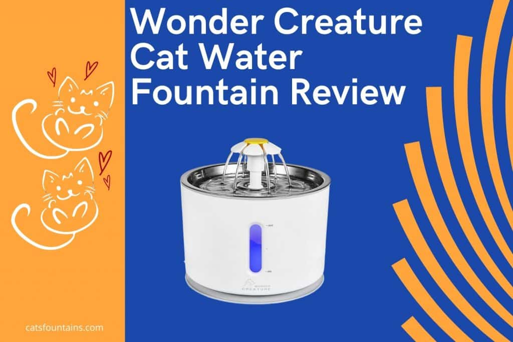 Wonder Creature Stainless Steel Cat Water Fountain Review