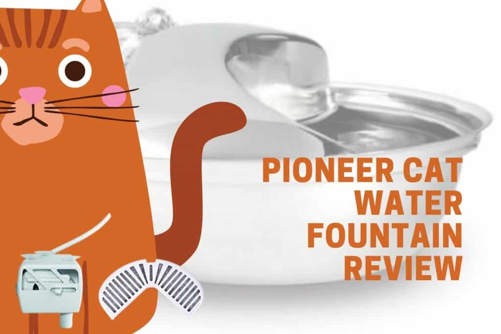 Pioneer fountain review