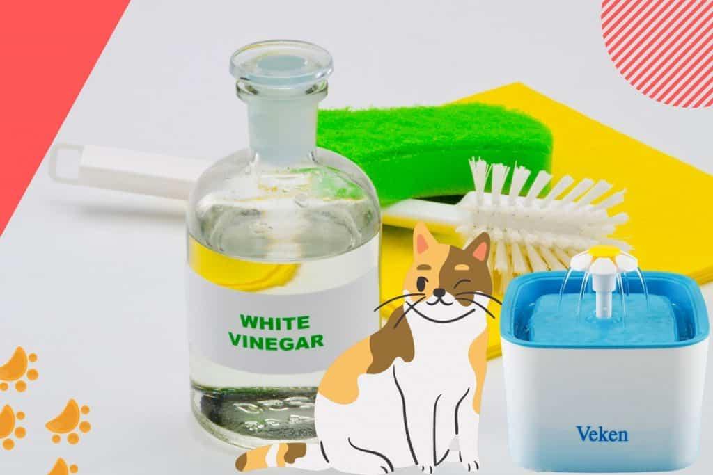 clean cat water fountain vinegar